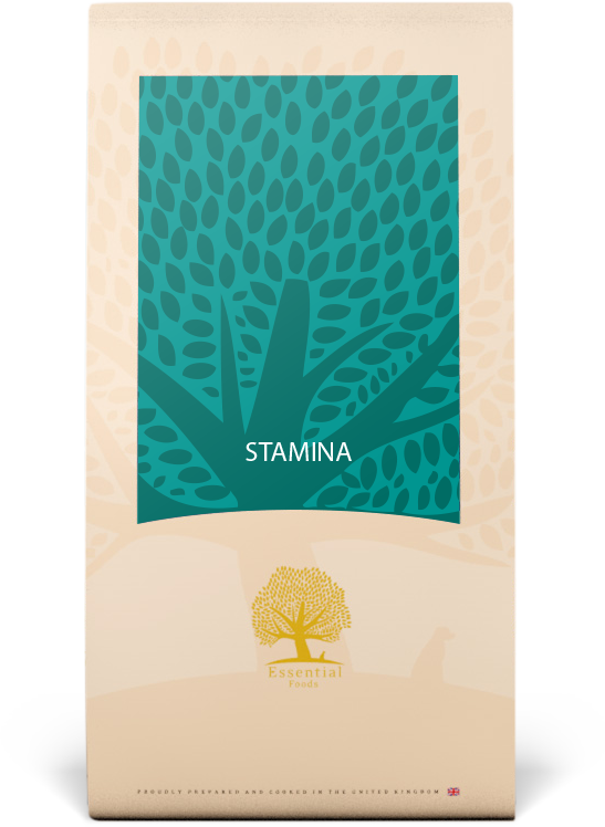 Essential Stamina small breed 3 kg